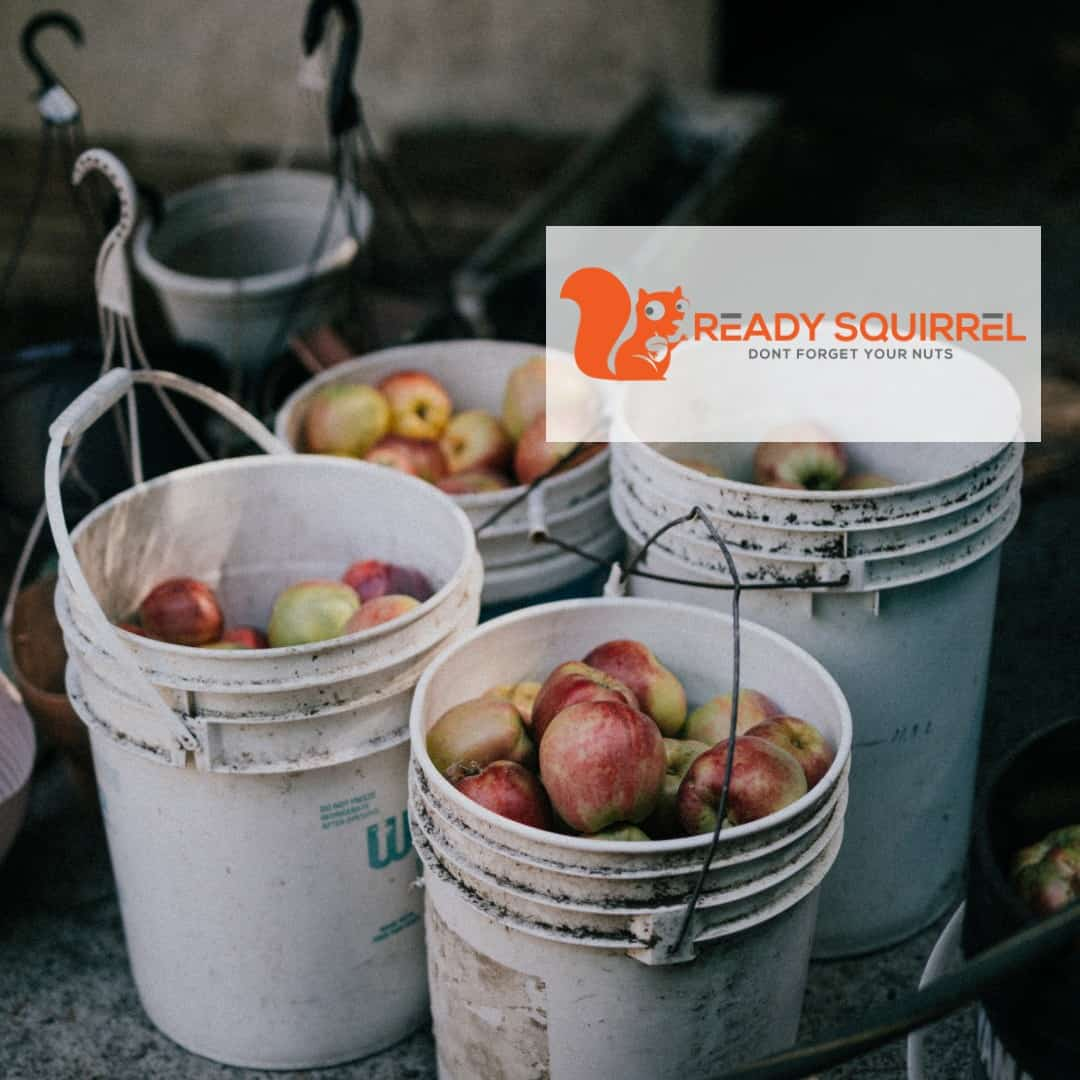 apples in white food grade buckets