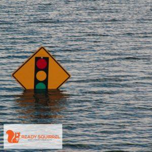flood, stoplight ahead