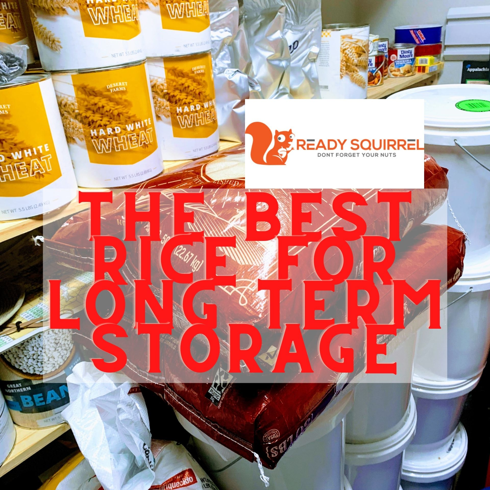 Best Rice For Long Term Storage And How To Store It