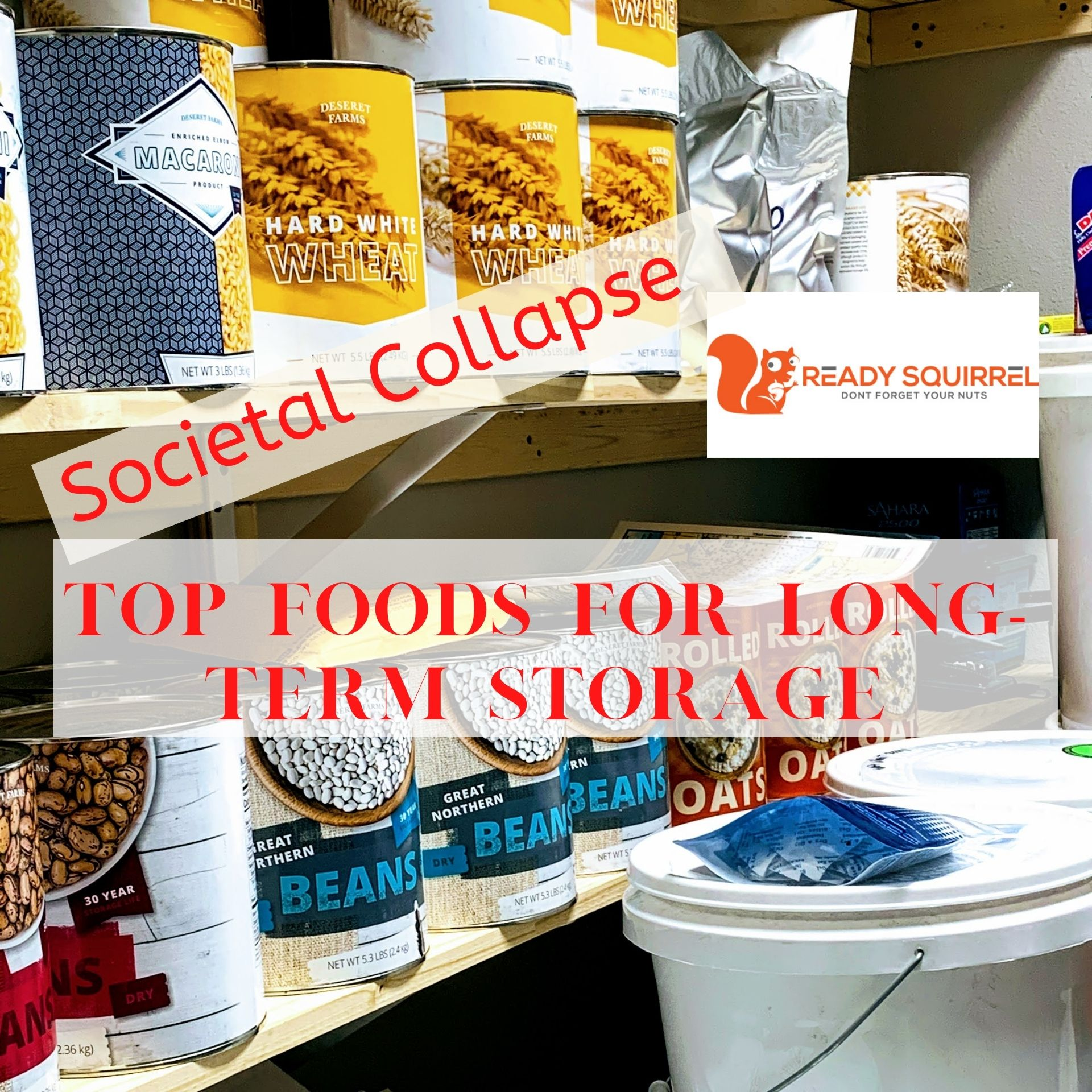 Societal Collapse: 36 Top Foods For Storage