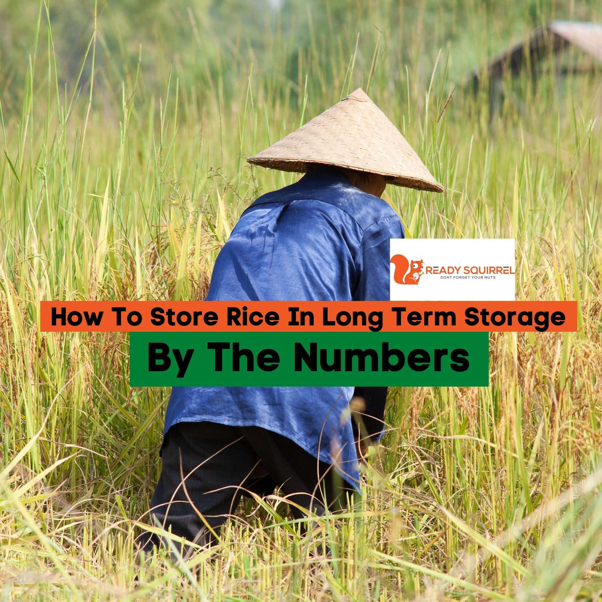 How To Store Rice In Long Term Storage: By the Numbers
